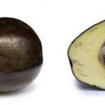 Des aliments riches en graisses pour perdre du ventre