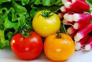 Le régime antioxydant et ses bienfaits