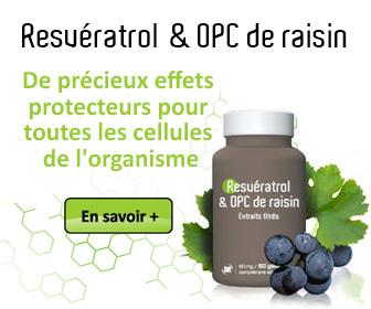 Le resvératrol et les OPC inhibent la formation du mauvais cholestérol et l'athérosclérose...