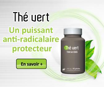 bannière Thé vert - Un puissant anti-radicalaire protecteur